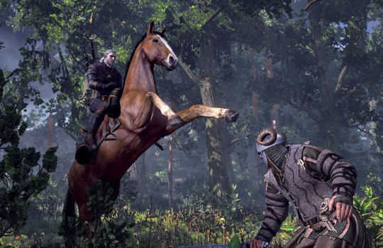 "Screenshot from ""The Witcher 3"""