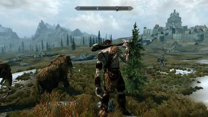 skyrim_microplay_2