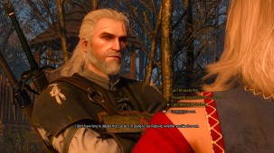 witcher dialogue
